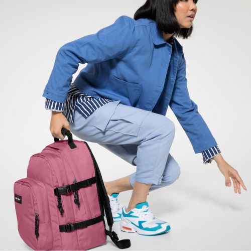 Provider Salty Pink Backpacks by Eastpak - view 2