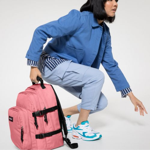 Provider Seashell Pink Backpacks by Eastpak - view 2