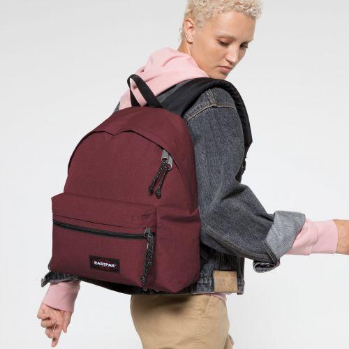 Padded Zippl'r Crafty Wine Backpacks by Eastpak - view 2
