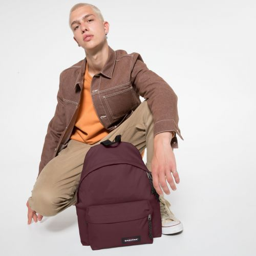Padded Pak'r® Upcoming Wine Backpacks by Eastpak - view 5