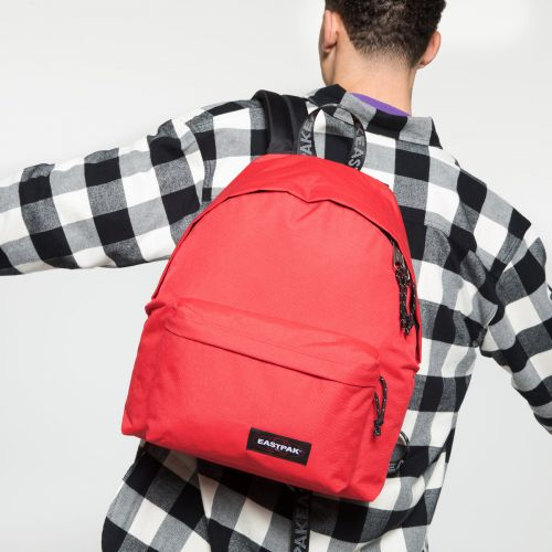 Padded Pak'r® Bold Webbed Backpacks by Eastpak - view 5