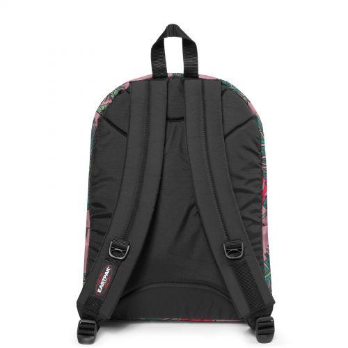 Pinnacle Brize Tropical Backpacks by Eastpak