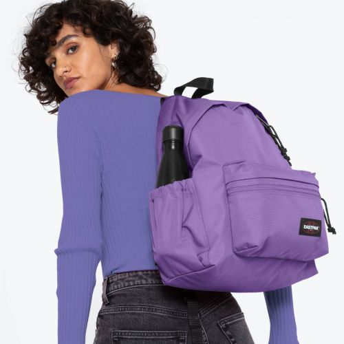 Padded Zippl'R + Petunia Purple